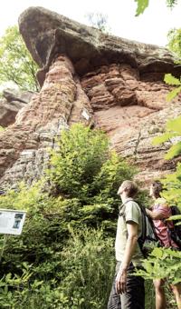 Buntsandstein in der Pfalz - Wie aus einer wüstenartigen Landschaft massive Steintürme entstanden