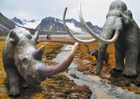 Hallo Mammut!
