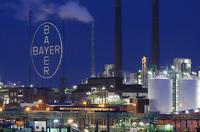 Bayer verkleinert IT